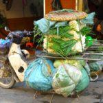Moped mit sehr viel Gepäck - Strassenszene in Hanoi, Vietnam