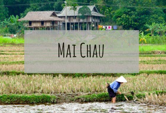 Frau arbeitet auf Feld - in Mai Chau, Vietnam