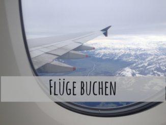 Blick aus Flugzeitfenster auf verschneite Landschaft